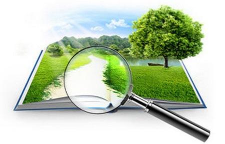 Поиск земельного участка