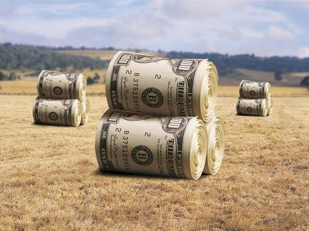 Земельный налог для физических и юридических лиц: особенности уплаты